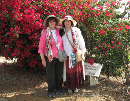 Sheryl & L. Eilee in front of floral bush at Mt. of Beatitudes